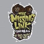 Missing Link Logo Design